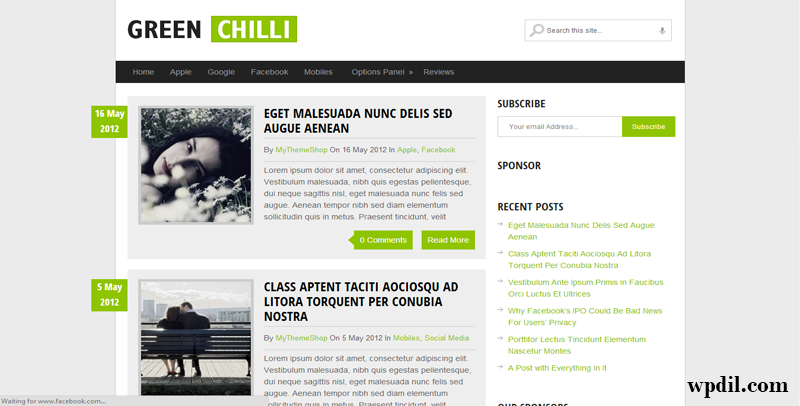 GreenChilli,themes,theme,wordpress,wp