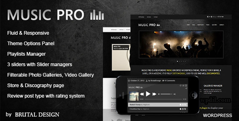 MusicPro,entertainment,wordpress,themes,theme,wp,premium