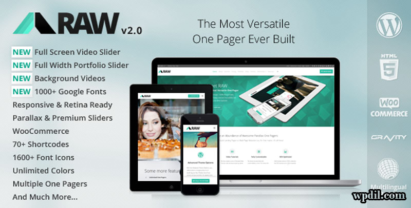 Raw,wordpress,wpdil,wp,themes,theme,premium,template,php