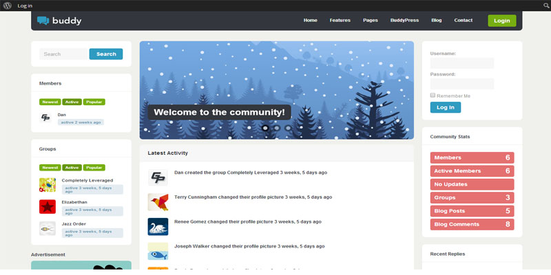 buddy,buddypress,forum,bbpress,wordpress,theme