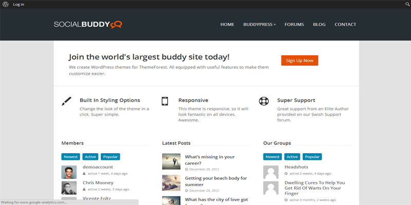 socialbuddy,buddypress,forum,bbpress,wordpress,theme