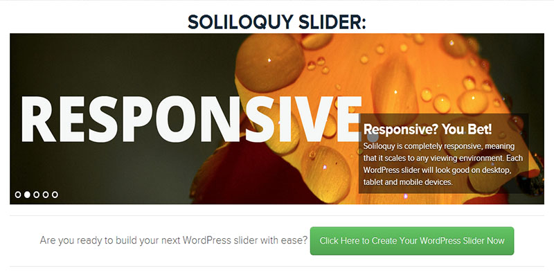 soliloquy,free wordpress slider
