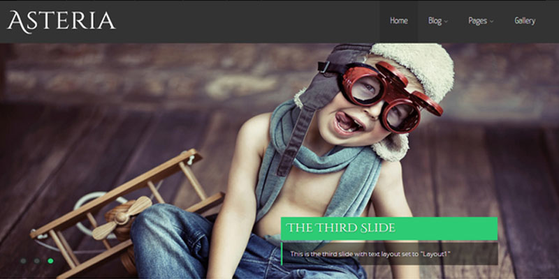 asteria,Free Responsive wordpress themes